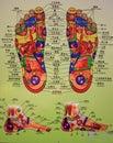 Foot Massage Chart Royalty Free Stock Photo