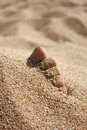 Foot in sand under sun Royalty Free Stock Photography