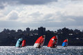 18 foot skiffs on Sydney Harbour Royalty Free Stock Photo