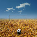 Footbal pitch Arkivfoto