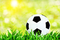 Football abstract backgrounds with unfocused bokeh and sun flare Royalty Free Stock Image