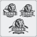 Football, baseball and hockey logos and labels. Sport club emblems with head of lion.