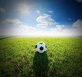 Football field soccer stadium on the green grass blue sky sport game background for design Royalty Free Stock Photo