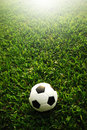 Football field soccer stadium on the green grass blue sky sport game background for design Stock Image