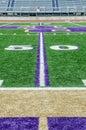 Football field on 50 yard line Royalty Free Stock Photo