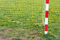 Football goal post and net in spring with flowers iin Stock Photography