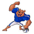 Football playing bear Stock Image