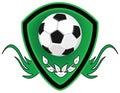 Football Shield. Stock Image
