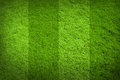 Football soccer green grass texture background Royalty Free Stock Photo