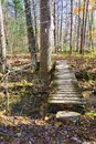 Footbridge on the Appalachian Trail Royalty Free Stock Photo
