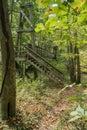 Footbridge on the Appalachian Trail Royalty Free Stock Photo