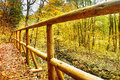 Footbridge in autumnal forest in bezrucovo udoli valley czech republic Stock Photo