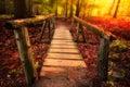 Footbridge through forest Royalty Free Stock Photo