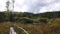 Footbridge in morass autumn peat bog Royalty Free Stock Photos