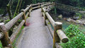 Footbridge a in the mountains Royalty Free Stock Photos