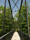 Footbridge over river in the woods Royalty Free Stock Photo