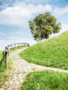 Footpath Royalty Free Stock Images