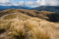 Footpath across grassy fields in nelson lakes national park new zealand Royalty Free Stock Photo