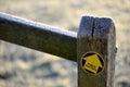 Footpath arrow on oak post Royalty Free Stock Photo
