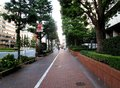 Footpath and bike lane in tokyo japan august beside showa dori the main road that runs through the middle of showa august Stock Image
