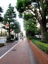 Footpath and bike lane in tokyo japan august beside showa dori the main road that runs through the middle of showa august Stock Photo