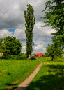 Footpath in the countryside Royalty Free Stock Photo