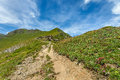 Footpath among hillsides in alps trail green under beautiful sky with white clouds italian Stock Photos