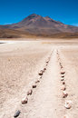 Footpath near Miscanti lagoon, Chile Royalty Free Stock Photography