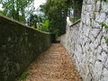 Footpath and old leaves with stones Royalty Free Stock Photography