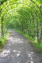 Footpath overgrown with plants in the garden of linderhof castle bavaria germany Stock Photo