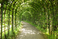 Footpath overgrown with plants in the garden of linderhof castle bavaria germany Royalty Free Stock Photos