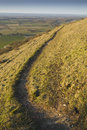 Footpath on the south downs in golden sunlight in sussex Royalty Free Stock Photo