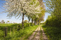 Footpath at springtime in rural countryside Stock Images
