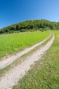 Footpath in the swabian jura germany Stock Images