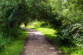 Footpath under the shade of trees in summer on sunny day milton keynes uk Royalty Free Stock Photography