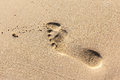 Footprint human barefoot footprints on the sand of a tropical beach Royalty Free Stock Photography