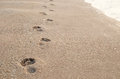 Footprint on sand Royalty Free Stock Photo