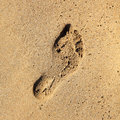 Footprint in the sand. Royalty Free Stock Image