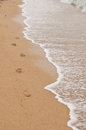 Footprint in the sand at seaside Royalty Free Stock Image