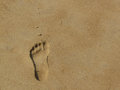 Footprint on the sand of time - Puri beach, India Royalty Free Stock Photos