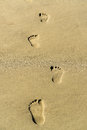 Footprint on a sandy beach Royalty Free Stock Photo