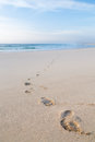Footprints on beach of feet a walking away from the sea Royalty Free Stock Photo