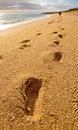 Footprints on the beach left by two distant figures Royalty Free Stock Photo