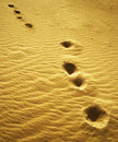 Footprints on dune sand Stock Photos