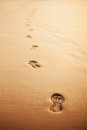 Footprints in the golden sand Royalty Free Stock Photo