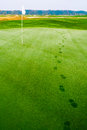 Footprints on golf grass near flag in dew Royalty Free Stock Photo