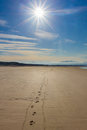 Footprints in the sand against sun ayt newborough beach anglesey wales Stock Photography