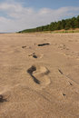 Footprints in the sand of the beach of the Baltic coast