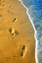 Footprints in the sand on beach at sunset Royalty Free Stock Photo