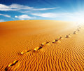 Footprints on sand dune Royalty Free Stock Photos